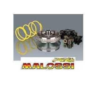 VARIATORE MALOSSI HONDA SH 300 4T LC
