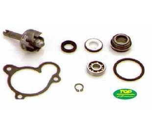 KIT REVISIONE POMPA MIN YAMAHA MAGESTY 250/270